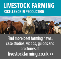 https://www.zoetis.co.uk/livestock-farming/beef-home.aspx