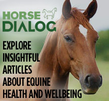 https://www.horsedialog.co.uk/