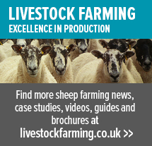 https://www.zoetis.co.uk/livestock-farming/sheep-home.aspx
