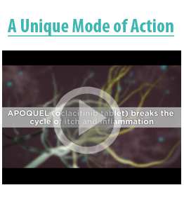 Mode of action